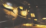 花蓮七星柴魚博物館展覽空間