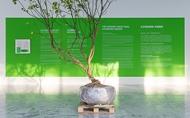 《五百棵檸檬樹:有機檔案》黃博志個展 –以情感與契約佐酒,讓檸檬樹苗釀造出一座工廠