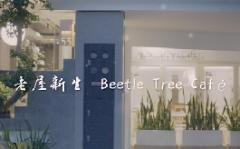 【以樂設計 張温莉 設計總監】老屋新生 Beetle Tree Café