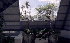 【以樂設計 張温莉 設計總監】巧手再造老屋新姿態 綠意煥發自然生命力